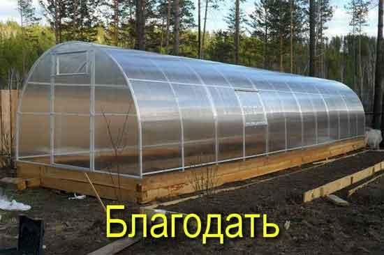 Отличия стекла, полиэтилена и поликарбоната для теплиц